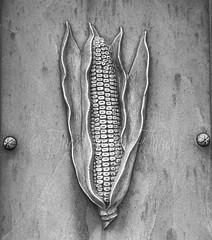 Corny (ThePaperTyger) Tags: blackandwhite cemeteries cemetery blackwhite connecticut newengland corny newtown whitebronze 7up2015