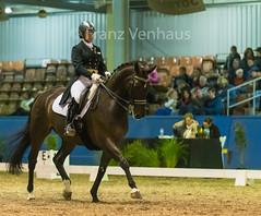 150606_Mel_CDI-W_GP_1601.jpg (FranzVenhaus) Tags: sport australia melbourne victoria grandprix riding aus dressage