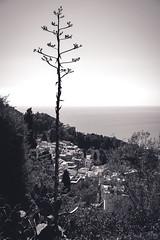 taormina-4 (mdc-photo-graphic.com) Tags: city italy island coast nikon outdoor corso east sicily taormina umberto messina d800