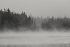 Trillium Morning (Joshua Johnston Photography) Tags: blackandwhite fog oregon pacificnorthwest trilliumlake mthoodnationalforest canonef2470mmf4lisusm canon6d joshuajohnston