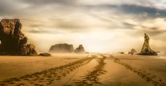 Horse trails in the sand (Stan Smucker) Tags: bandonbeach bandon beach horsetracks seashore oregoncoast tracksinsand sand goldcollection