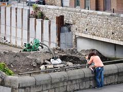 (turgidson) Tags: panasonic lumix dmc g7 panasoniclumixdmcg7 panasonicg7 micro four thirds microfourthirds m43 g lumixg mirrorless x vario 35100mm 35100 f28 hhs35100 telephoto zoom lens panasonic35100 panasoniclumixgxvario35100mmf28 silkypix developer studio pro 7 silkypixdeveloperstudiopro7 raw bray wicklow ireland flood defence protection relief scheme river dargle construction works lower road lowerdargleroad p1000158 fran otoole bridge franotoolebridge