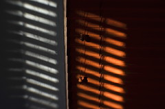Slanted And Slatted (MPnormaleye) Tags: lensbaby 35mm shadows utata blinds slats sweet35