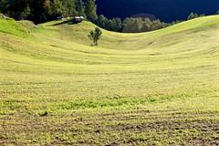 Haute Route - 23 (Claudia C. Graf) Tags: switzerland hauteroute walkershauteroute mountains hiking