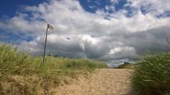 Going Home. (mcginley2012) Tags: murvagh thebackstrands sand grass dunes cloud light cameraphone signpost path marramgrass beachgrass donegal ireland coast goinghome
