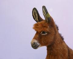 Donkey_5 (kdc123) Tags: donkey furred breyer custom ooak chestnut miniature