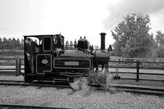SBR 32315bw (kgvuk) Tags: trains railways locomotives steamlocomotive sbr narrowgaugerailways marchlyn statfoldbarnrailway