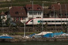 SBB ICN Intercity Neigezug  RABDe 500 017 - 9 mit Taufname Willi Ritschard ( Schweizer Bundesrat => SO => 28.09.1918 - 19.10.1983 ) am Bielersee bei Ligerz im Berner Seeland im Kanton Bern der Schweiz (chrchr_75) Tags: christoph hurni schweiz susise switzerland svizzera suissa swiss chrchr chrchr75 chrigu chriguhurni mai 2015 albumbielersee bielersee see lac lake lago kantonbern berner seeland chriguhurnibluemailch suisse albumzzz201505mai albumbahnenderschweiz albumbahnenderschweiz201516 schweizer bahnen eisenbahn bahn train treno zug sbb cff ffs rabde 500 albumsbbicnrabde500 intercity neigezug juna zoug trainen tog tren  lokomotive  locomotora lok lokomotiv locomotief locomotiva locomotive railway rautatie chemin de fer ferrovia  spoorweg  centralstation ferroviaria