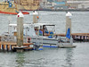 Coronado 5-26-15 (14) (Photo Nut 2011) Tags: california sandiego coronado ferrylanding portofsandiego