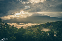 DSC01268wm (Ray Ng Photography) Tags: morning wallpaper sunlight mountains angle minolta tennessee sony great wide foggy konica gatlinburg smoky ultra 1735 a99