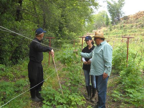 Nabeh Elsafa visit Talal Sarah Samer & Sheikh Monitor Plants ab May 3, 2015