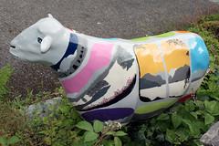 Lady Baa Baa (Cumberland Patriot) Tags: lady hostel sheep outdoor painted go cumbria trust calvert elterwater ewe baabaa cumbrian herdwick goherdwick