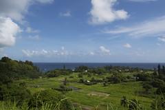 View from the Road to Hana (spollock61) Tags: summer nature beauty island hawaii nikon maui hana