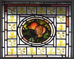 Stained Glass Fruit Pomegranate Scotland (RDW Glass) Tags: fruit century scotland glasgow painted victorian pomegranate stainedglass 19th dowanhill rdwglass