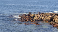 Fishermen (Rckr88) Tags: ocean africa travel sea fish nature water rock southafrica outdoors coast fishing rocks fishermen south coastal coastline westerncape plettenberg rockycoastline plettenbergbay