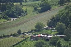 sDSC_0076 (L.Karnas) Tags: wien vienna wiede    viena vienne sommer summer 2016 leopoldsberg aussichtspunkt nasenweg panorama