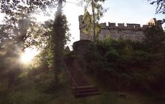 (felix.h) Tags: summer building castle backlight canon eos wideangle backlighting sigma1020mm sigma1020 obernhof 400d canoneos400d digitalrebelxti eoskissdigitalx schlosslangenau