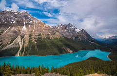 160621_02 (LoomahPix) Tags: ab alberata canada icefieldsparkway lake mountain mountains outdoors outside peytolake rockymountaineer beautiful beauty green reflection trees water
