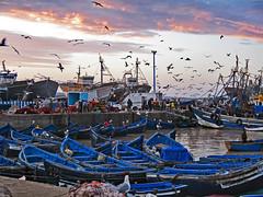 Essaouira Harbor after Sunrise (Ellsasha) Tags: northafrica morocco essaouira port fishing harbor harbour
