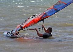 Aug0307a (Mike Millard) Tags: hamworthypark pooleharbour windsurfers