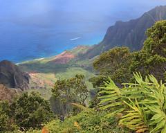 back to kalalau lookout (1600 Squirrels) Tags: 1600squirrels photo 5dii lenstagged canon24105f4 kokeestatepark northshore kauai kauaicounty hawaii usa kalalau lookout landscape tonemapped westside