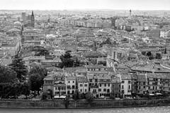 View over Verona (petia.balabanova(tnx for +1.500.000 views)) Tags: biancoenero verona italy view blackandwhite bw nikond800 2470mm travel city cityscape rooftops houses river monocromo monochrome