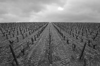 2015-04 Bordeaux Primeurs-126