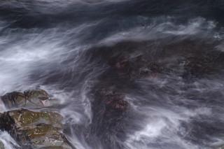 Caithness Coastline