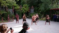 Maori triabl dancing (Donald Morrison) Tags: newzealand food rotorua northisland tamakimaorivillage maoridinner hangifeast