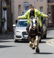 Galloping gipsy (alh1) Tags: england horse places riding cumbria equestrian gallop gipsy kirkbylonsdale southlakeland