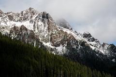 Mt Ellinor (YuriZhuck) Tags: usa mountain tree nature forest landscape us washington unitedstates hiking trail wa olympics ellinor overlook range