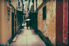 untitled (~kenlwc) Tags: leica 35mm summicron35mmv1 8elements road street macau color photography kenlwc kenleung lane path people life urban city umbrella