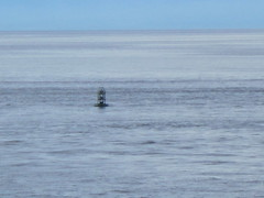 IMG_0010 (Sweet One) Tags: canada bc britishcolumbia victoria buoy bcferries salishsea buoyant vancouvertovictoria tsawassentoswartzbay
