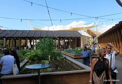Begrünte Hochbeete_5421 (urban-development) Tags: urban gardening stadtökologie lebensqualität wien