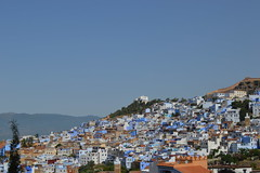 Morocco (nyssalily95) Tags: morocco chefchaouen thebluepearl travel studyabroad