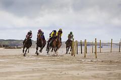 to fast (Sigita JP) Tags: racing horserace beach westofireland omeyraces connemara galway horses