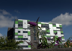 UCLan Media Building and Summer Colour - 1 (Tony Worrall) Tags: preston north northwest lancs lancashire england northern uk update place location visit area county attraction open stream tour country welovethenorth unitedkingdom summer weeds colour flowers bush urbannature prestonnature mediabuilding architecture uclan university block leggo made modern teach students meet outdoors teaching