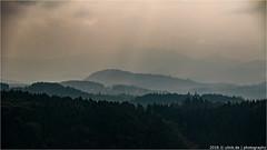 _elbsandsteingebirge (l--o-o--kin thru) Tags: elbsandsteingebirge sachsen nebel mist wald schsischeschweiz