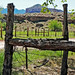 Fenced In, Grafton Ghost Town, UT 4-14