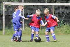 Feriencamp Neumnster 28.07.16 - b (32) (HSV-Fuballschule) Tags: hsv fussballschule feriencamp neumnster vom 2507 bis 29072016