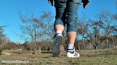 Adidas Top Ten Hi [2010] (foto 37) (HomoZapas) Tags: homozapas zapatillas sneakers baskets adidas deportivas zapas topten toptenhi tenis zapatillasdeportivas shoes turnschuhe scarpe chaussures кроссовки espadrilles calcetines socks chaussettes socken