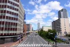- Sapporo (ken_visto) Tags: landscape veduta  sapporo hokkaido  japan d800