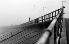 Aberdeen Beach (PeskyMesky) Tags: aberdeen aberdeenbeach scotland pov pointofview mist fog depthoffield dof bw blackandwhite canon canoneos500d monochrome