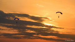 When the sun goes down ... (Arminio Andrei) Tags: tamronsp150600f563divcusd beautifulcolors beautifulsky d810 parachutists public sunset