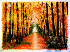 autum road (baudelaireiano) Tags: road paint autum acrilic