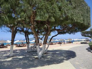 Along Nha Trang's beachfront