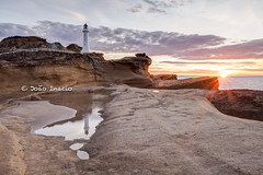 Castlepoint (Joao Victor Inacio) Tags: newzealand lighthouse sunrise landscape castlepoint flickraward5
