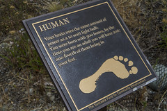 Human Placard - Suncadia (Don Thoreby) Tags: cascades washingtonstate placards cascademountains cascaderange naturesigns thousandstepstaircase
