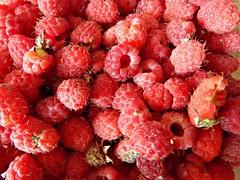 mnogo-malinok (Horosho.Gromko.) Tags: raspberries raspberry berries summer red fruit