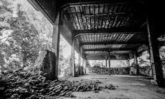 Abandoned 1 (gyorgysz) Tags: white black building abandoned film me analog zeiss pentax trix rusty super jena carl epson flektogon 20mm f28 excel 3170 fomadon pentaxart
